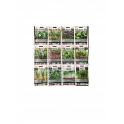 12 Mix Sprouts Seeds