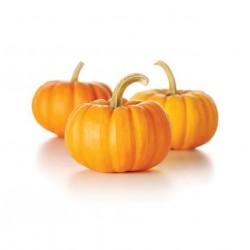 Yellow Pumpkin Seeds