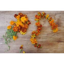 Edible Dry Marigold Flower