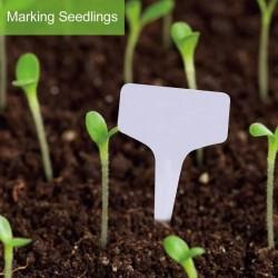Plants Marker
