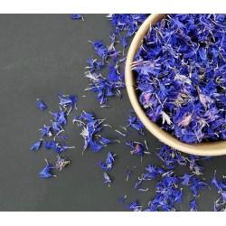 Dry Blue Cornflower Flowers