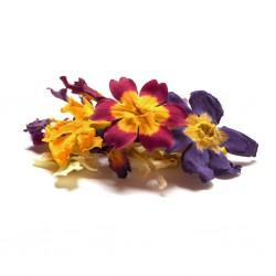 Edible Dried Organic Mix Primrose Flowers