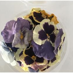 Edible Dry Pansies Flowers