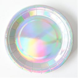 Round Metallic Silver Paper Plate